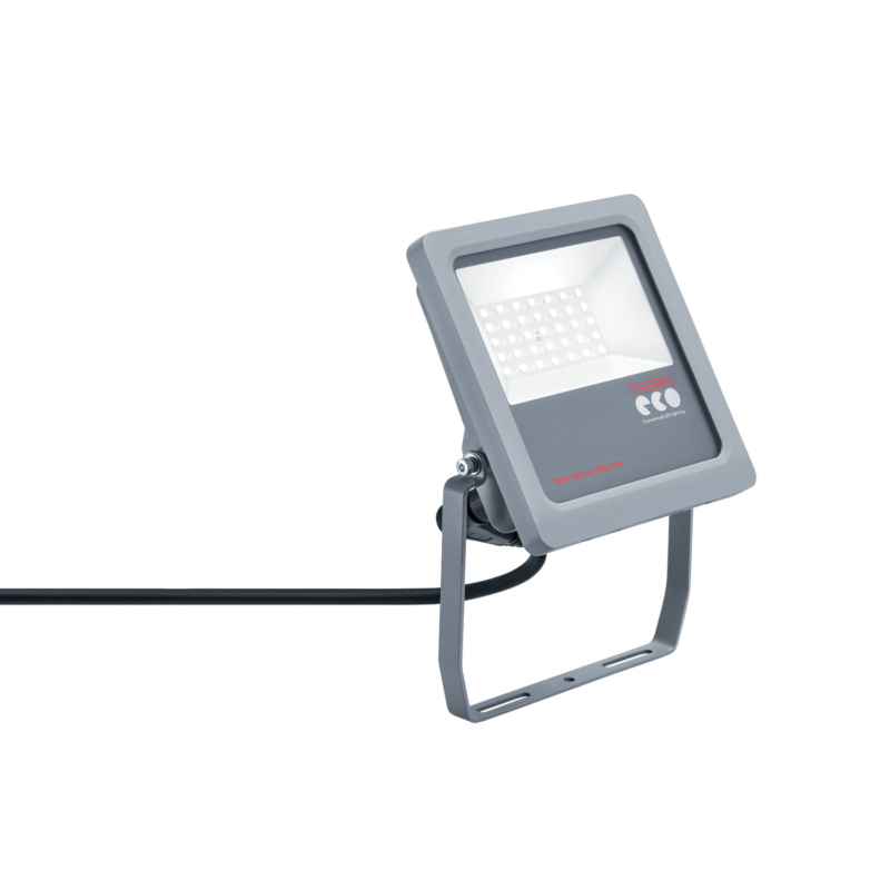 Thorn Eco Leonie LED Floodlight Grey 30W