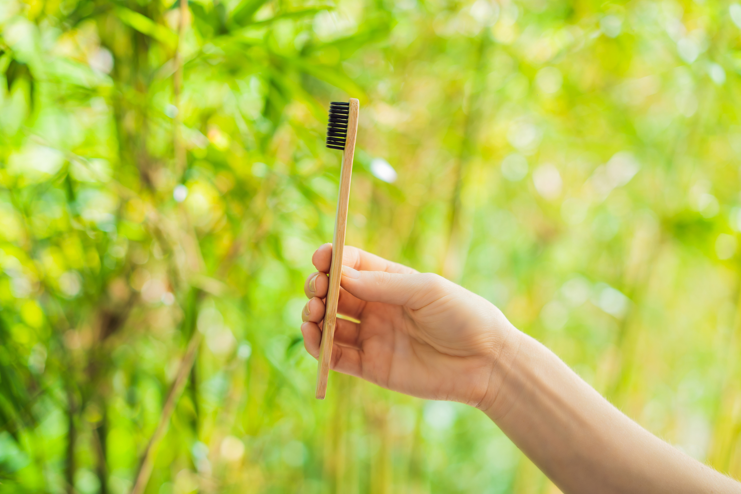 Bamboo toothbrush on a background of green growing bamboo