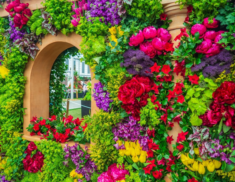 bright flowers flower show web