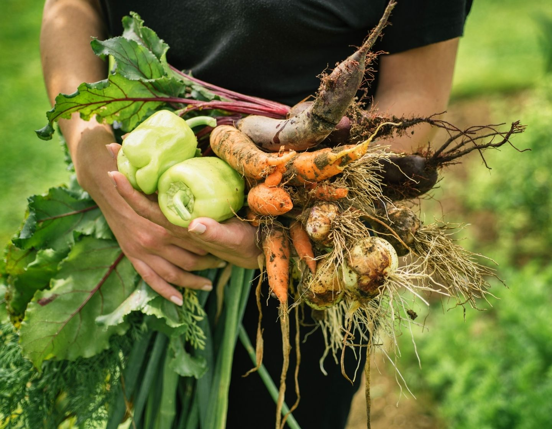 growing food vegetables web