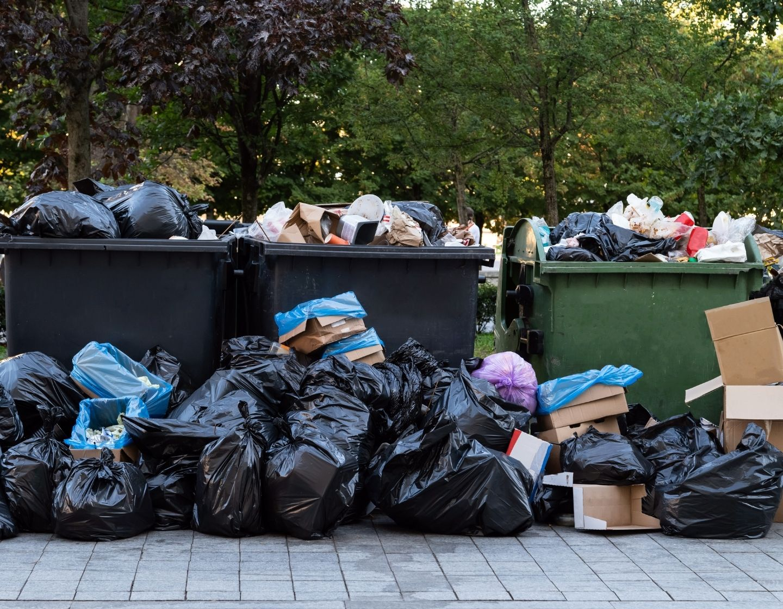 waste in dumpster landfill web