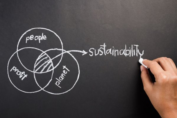 Chalkboard sustainability diagram image