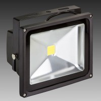 Value 30W LED Floodlight | SaveMoneyCutCarbon
