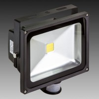 Value 30W PIR Floodlight | SaveMoneyCutCarbon