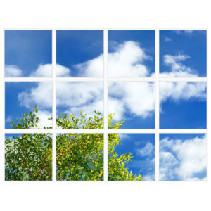 sky-1-Branches-12-sq