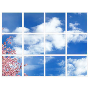 sky-1-Cherry-Blossom-12-sq