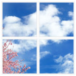sky-1-Cherry-Blossom-4-sq