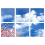 sky-1-Cherry-Blossom-6-sq