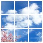 sky-1-Cherry-Blossom-9-sq