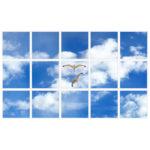 sky-1-Seagulls-15-sq